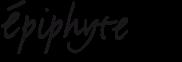 epiphyte-logo